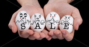 stock-photo-hand-holding-cute-eggs-with-funny-face-smileys-sale-sign-92297473